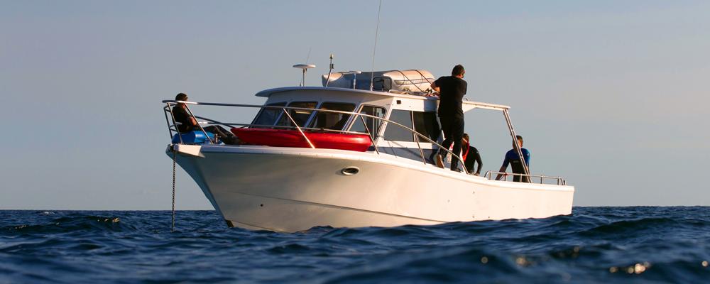 Boat-Fix1